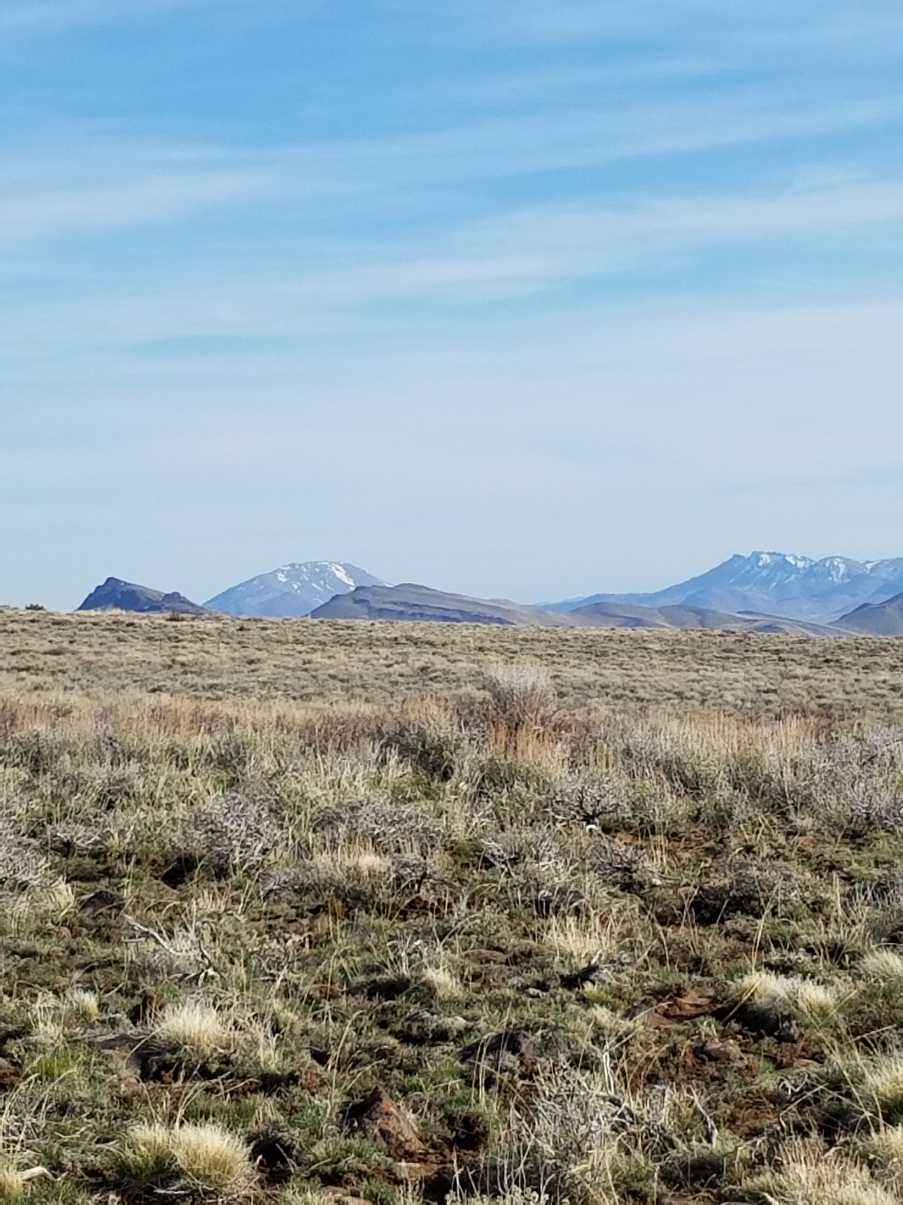 The Pueblo Mountains- High Steens Sage Grouse Habitat